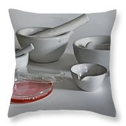Science Class Throw Pillow