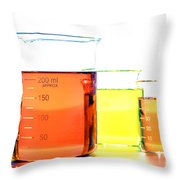 Scientific Beakers In Science Research Lab Throw Pillow