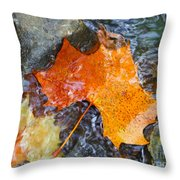 Scioto River Leaves Series 1 Throw Pillow