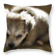 Scolded Throw Pillow