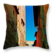 Scorched By The Sun Throw Pillow