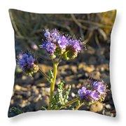 Scorpionweed Throw Pillow