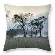 Scotch Mist Throw Pillow