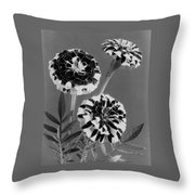 Scotch-stripe Marigolds Throw Pillow