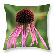 Scraggly Throw Pillow