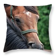Scratch My Back Throw Pillow