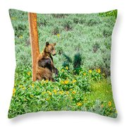 Scratch That Itch Throw Pillow