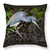 Scratchin' Throw Pillow