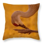 Scratching The Itchy Spot Throw Pillow