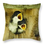 Screaming Hungry Throw Pillow by Christina Rollo