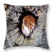 Screech Owl 02 Throw Pillow