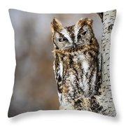 Screech Owl Checking You Out Throw Pillow