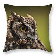 Screech Owl 1 Throw Pillow