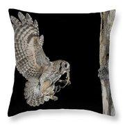 Screech Owl Feeding Owlets Throw Pillow
