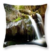 Screw Auger Falls 5281 Throw Pillow