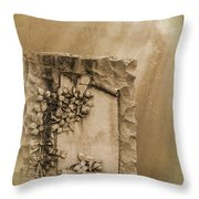 Scroll And Flowers The Forgotten Series 12 Throw Pillow