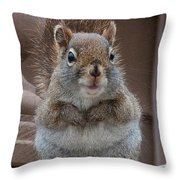 Scroodle Throw Pillow