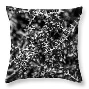 Scrub Throw Pillow