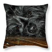 Scruff Throw Pillow