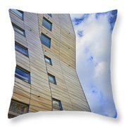 Sculpture Or Building Or Both 2 Throw Pillow
