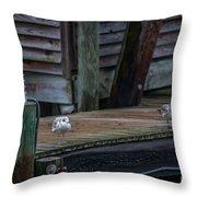 Sea Birds Dockside Throw Pillow