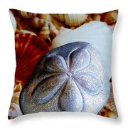Sea Biscuit Throw Pillow