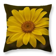 Sea Dahlia Throw Pillow