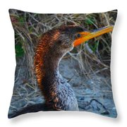 Sea Duck Throw Pillow