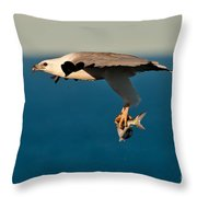 Sea Eagle With Catch Throw Pillow