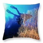 Sea Fans 2 Throw Pillow
