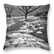 Sea Foam Botany Bay Throw Pillow
