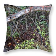 Sea Grape Jungle Throw Pillow
