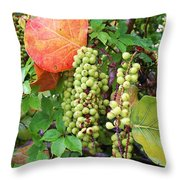 Sea Grapes And Poison Ivy Throw Pillow