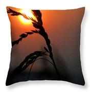 Sea Grass In The Sun Throw Pillow