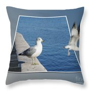 Sea Gull Away Out Of Bounds Throw Pillow