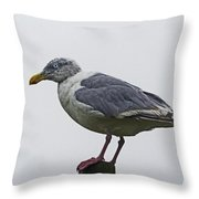 Sea Gull On The Dock On A Foggy Day Throw Pillow