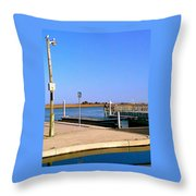 Sea Gulls Watching Over The Wetlands Throw Pillow