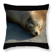 Sea Lion-00178 Throw Pillow