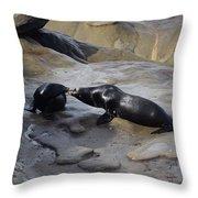 Sea Lion Kiss  Throw Pillow