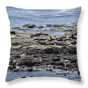 Sea Lion Resort Throw Pillow