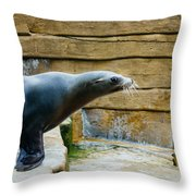Sea Lion Side View Throw Pillow