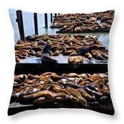 Sea Lions At Pier 39  Throw Pillow