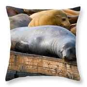 Sea Lions At Pier 39 In San Francisco Throw Pillow
