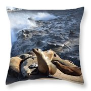 Sea Lions Seek Shelter Throw Pillow