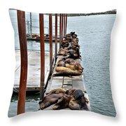 Sea Lions Sleeping Throw Pillow by Robert Bales