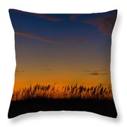 Sea Oats At Twilight Throw Pillow
