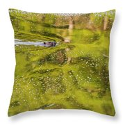 Sea Of Green Square Throw Pillow