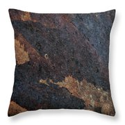 Sea Of Rust Throw Pillow by Fran Riley
