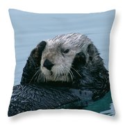 Sea Otter Grooming Throw Pillow