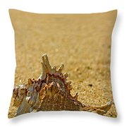Sea Shell By The Sea Shore Throw Pillow